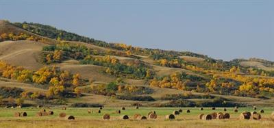Fairy Hills, Saskatchewan