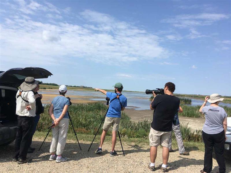Un groupe d'observateurs d'oiseaux de la Saskatoon Nature Society